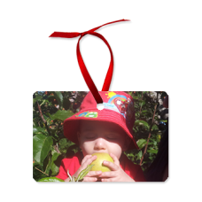 Horizontal Photo Ornament